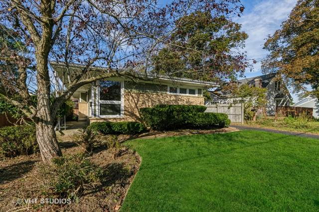 376 Brittain Avenue, Grayslake, IL 60030 (MLS #11250804) :: The Wexler Group at Keller Williams Preferred Realty