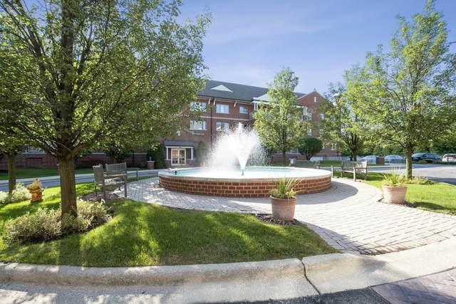 460 S Northwest Highway 203A, Park Ridge, IL 60068 (MLS #11250869) :: John Lyons Real Estate