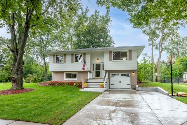 609 S Braintree Drive, Schaumburg, IL 60193 (MLS #11250978) :: John Lyons Real Estate