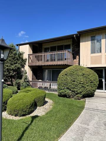 624 E Glenwood Dyer Road A, Glenwood, IL 60425 (MLS #11251003) :: The Wexler Group at Keller Williams Preferred Realty