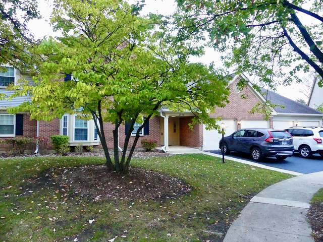 2406 Mallow Court Z1, Schaumburg, IL 60194 (MLS #11251026) :: The Wexler Group at Keller Williams Preferred Realty
