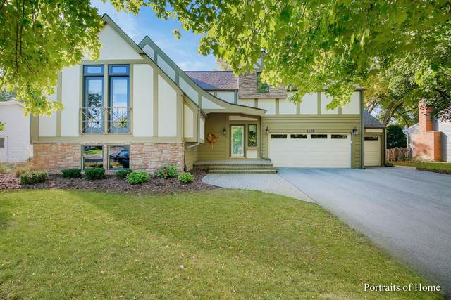 1138 Omaha Court, Naperville, IL 60540 (MLS #11251183) :: Jacqui Miller Homes