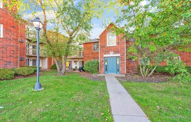 1373 Cunat Court 2B, Lake In The Hills, IL 60156 (MLS #11251307) :: Ryan Dallas Real Estate
