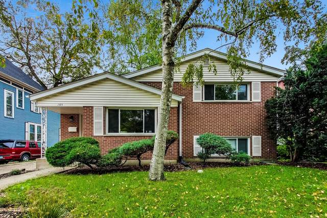 205 W Euclid Avenue, Arlington Heights, IL 60004 (MLS #11251321) :: Touchstone Group