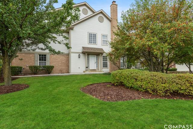 5475 Mcdonough Road, Hoffman Estates, IL 60192 (MLS #11251615) :: Littlefield Group