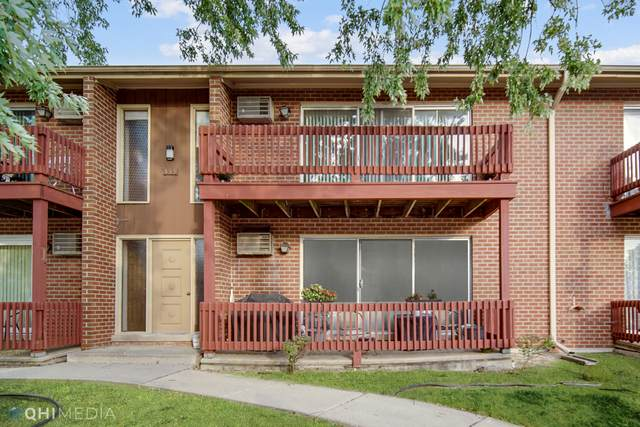 555 N Carroll Parkway 2E, Glenwood, IL 60425 (MLS #11251666) :: The Wexler Group at Keller Williams Preferred Realty