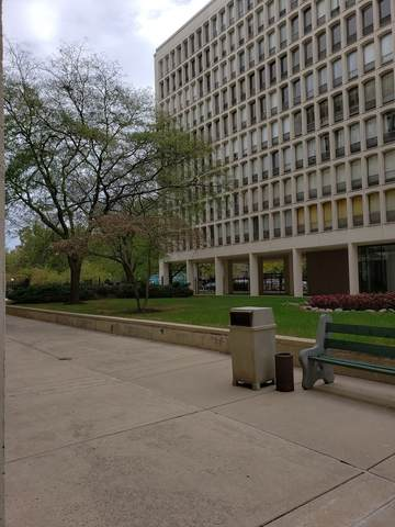 1400 E 55th Place 405S, Chicago, IL 60637 (MLS #11251724) :: Littlefield Group