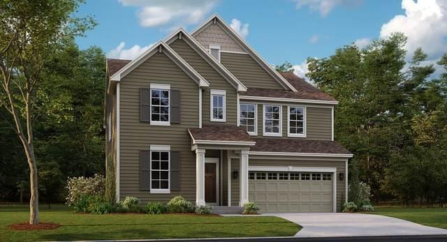 395 South Pointe Avenue, South Elgin, IL 60177 (MLS #11251755) :: Ryan Dallas Real Estate