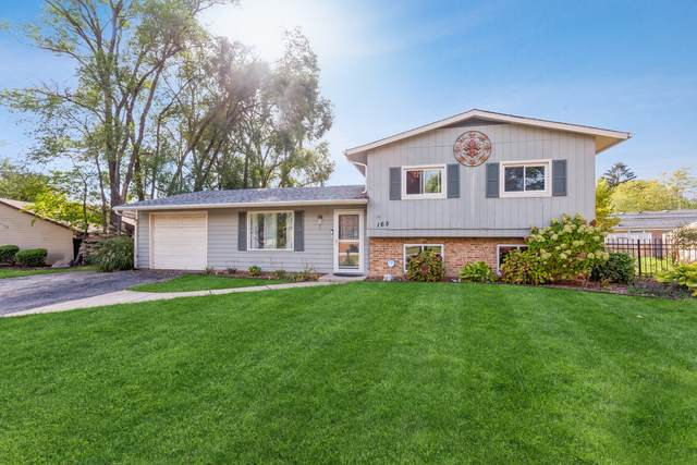 165 Vernon Drive, Bolingbrook, IL 60440 (MLS #11251874) :: The Wexler Group at Keller Williams Preferred Realty