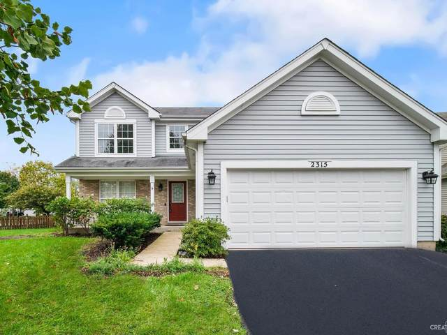 2315 Warm Springs Court, Naperville, IL 60564 (MLS #11251897) :: Littlefield Group