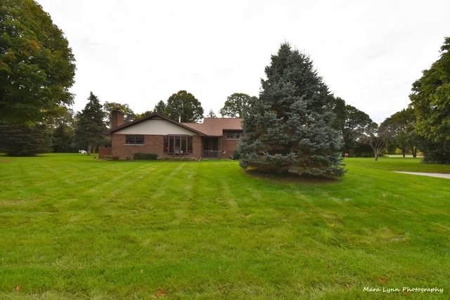 40W207 Sunflower Drive, Elgin, IL 60124 (MLS #11252024) :: Jacqui Miller Homes