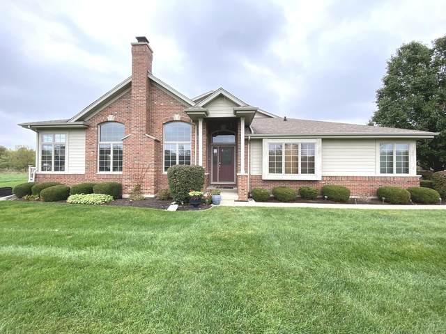718 River Place Drive, Bourbonnais, IL 60914 (MLS #11252090) :: John Lyons Real Estate