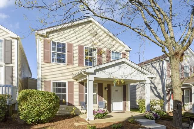 1055 Symphony Drive, Aurora, IL 60504 (MLS #11252105) :: Ryan Dallas Real Estate