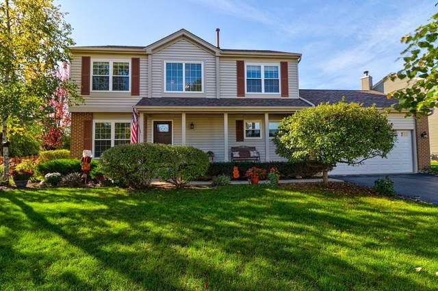 4100 Peartree Drive, Lake In The Hills, IL 60156 (MLS #11252126) :: Ryan Dallas Real Estate
