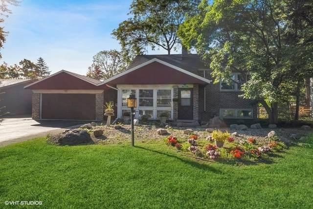 902 W Green Street, Bensenville, IL 60106 (MLS #11252153) :: Ryan Dallas Real Estate