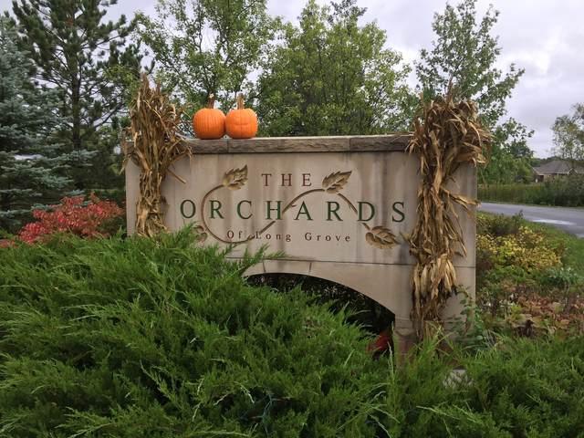 3993 Orchard Lane, Long Grove, IL 60047 (MLS #11252200) :: Ryan Dallas Real Estate