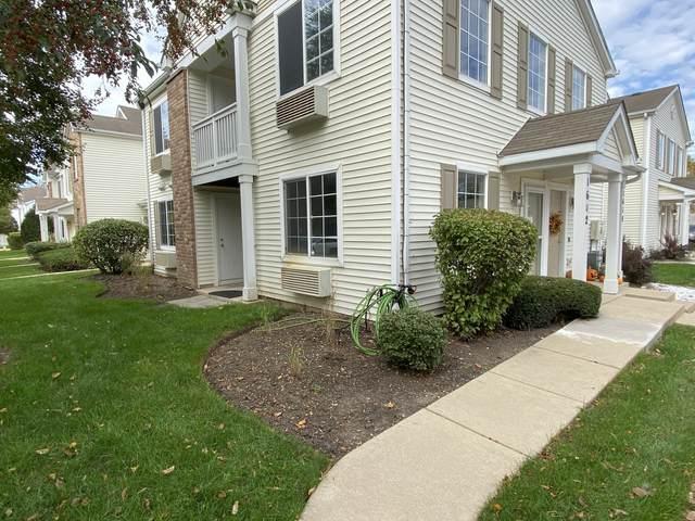 1602 Mcclure Road #1602, Aurora, IL 60505 (MLS #11252437) :: Ryan Dallas Real Estate