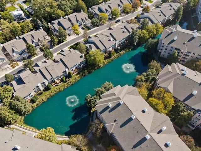 1745 Pavilion Way #508, Park Ridge, IL 60068 (MLS #11252443) :: Ryan Dallas Real Estate