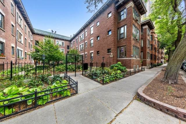 3747 N Pine Grove Avenue #3, Chicago, IL 60613 (MLS #11252616) :: Janet Jurich