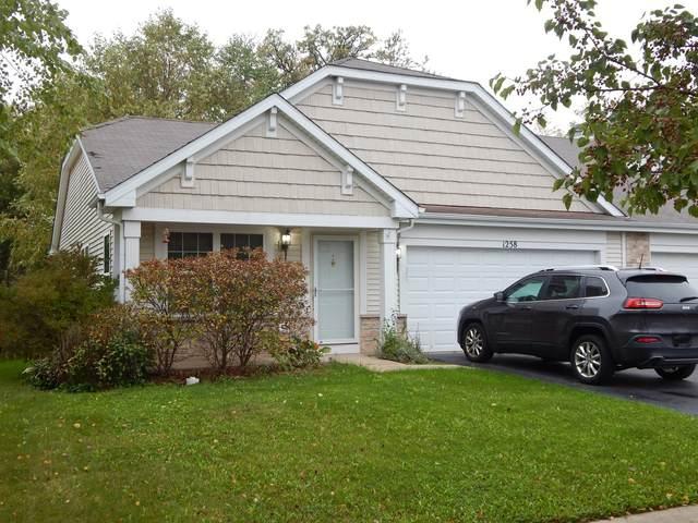 1258 Promontory Drive, Pingree Grove, IL 60140 (MLS #11252626) :: John Lyons Real Estate