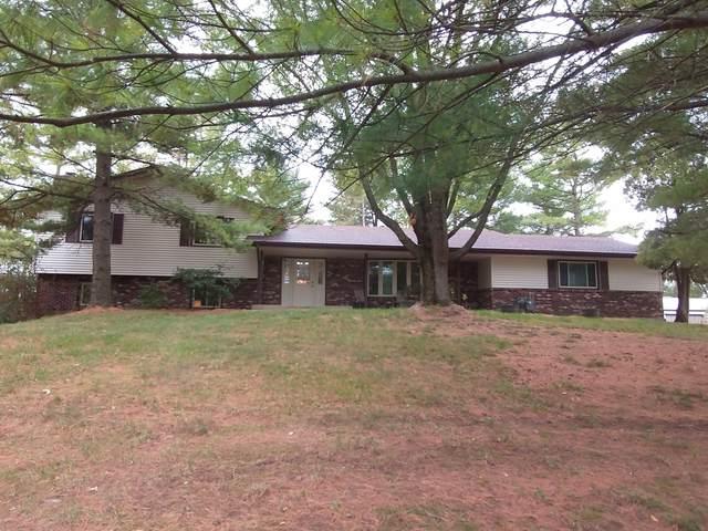 5881 E Skinner Road, Stillman Valley, IL 61084 (MLS #11252902) :: Ryan Dallas Real Estate