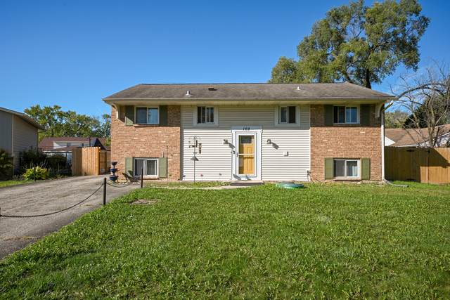 169 Vernon Drive, Bolingbrook, IL 60440 (MLS #11252905) :: RE/MAX IMPACT