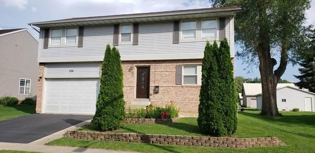 536 Gaynor Street, Belvidere, IL 61008 (MLS #11252925) :: Ryan Dallas Real Estate
