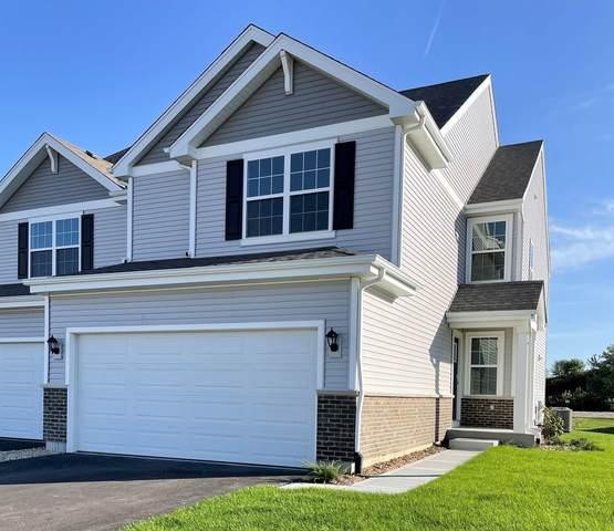 1231 Fawnlily Circle, Joliet, IL 60431 (MLS #11253087) :: John Lyons Real Estate