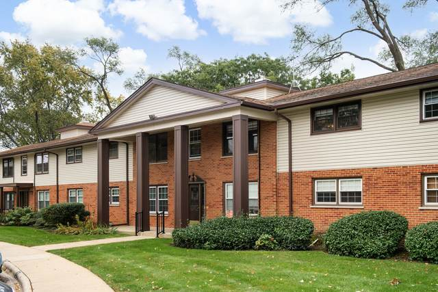 218 Washington Square A, Elk Grove Village, IL 60007 (MLS #11253095) :: The Wexler Group at Keller Williams Preferred Realty
