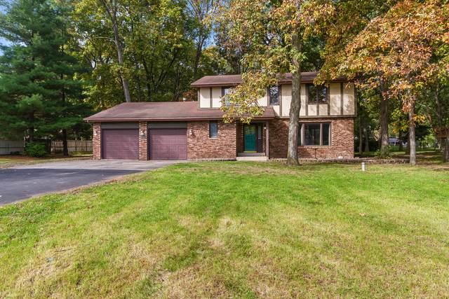 638 Mary Lane, St. Anne, IL 60964 (MLS #11253127) :: Ani Real Estate