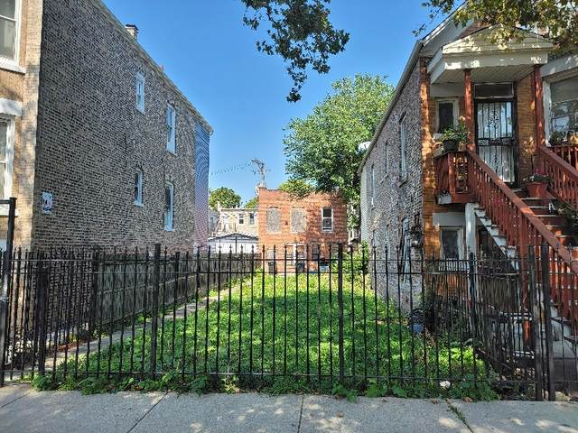 3010 W Cullerton Street, Chicago, IL 60623 (MLS #11253138) :: John Lyons Real Estate