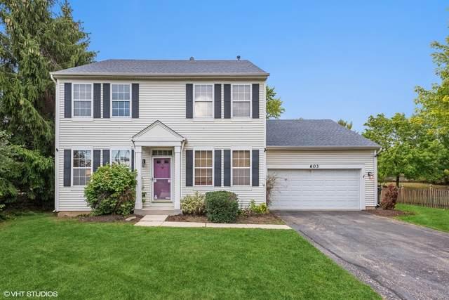 603 Genesee Drive, Naperville, IL 60563 (MLS #11253171) :: Helen Oliveri Real Estate