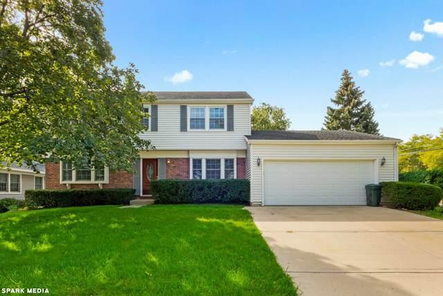 1131 Whitehall Drive, Buffalo Grove, IL 60089 (MLS #11253196) :: Helen Oliveri Real Estate