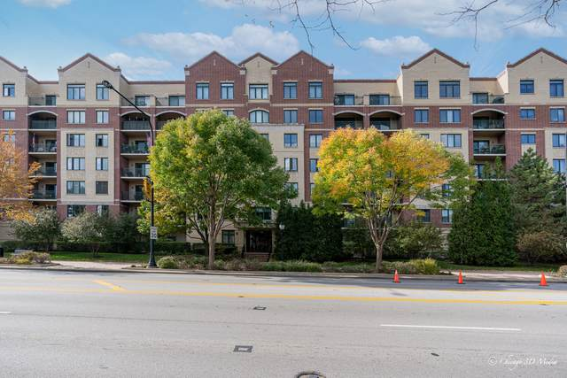 20 S Main Street #401, Mount Prospect, IL 60056 (MLS #11253253) :: The Wexler Group at Keller Williams Preferred Realty