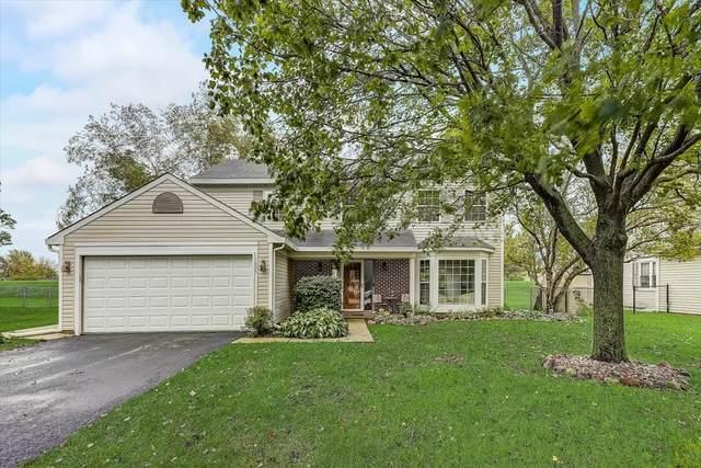 1635 Wildwood Lane, Hanover Park, IL 60133 (MLS #11253280) :: O'Neil Property Group