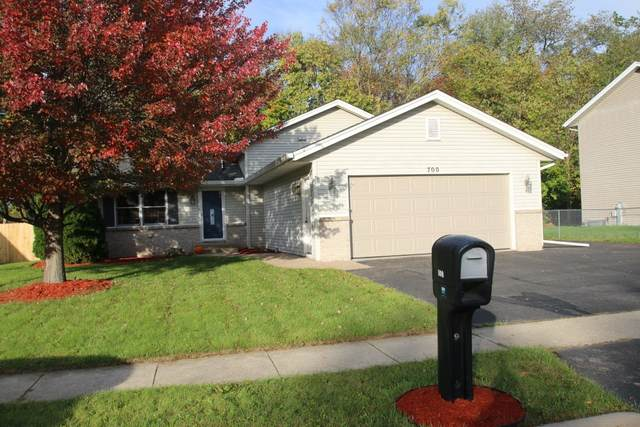 700 Merrill Drive, Belvidere, IL 61008 (MLS #11253318) :: The Wexler Group at Keller Williams Preferred Realty