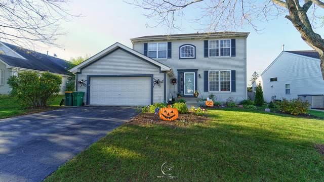 347 Woodhill Lane, Lake Villa, IL 60046 (MLS #11253364) :: Signature Homes • Compass