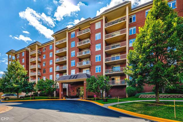 8300 Callie Avenue #214, Morton Grove, IL 60053 (MLS #11253415) :: The Wexler Group at Keller Williams Preferred Realty