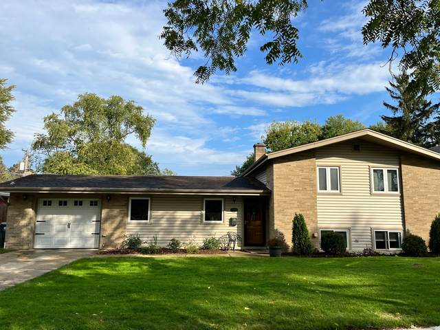 411 N Plum Grove Road, Palatine, IL 60067 (MLS #11253447) :: The Wexler Group at Keller Williams Preferred Realty