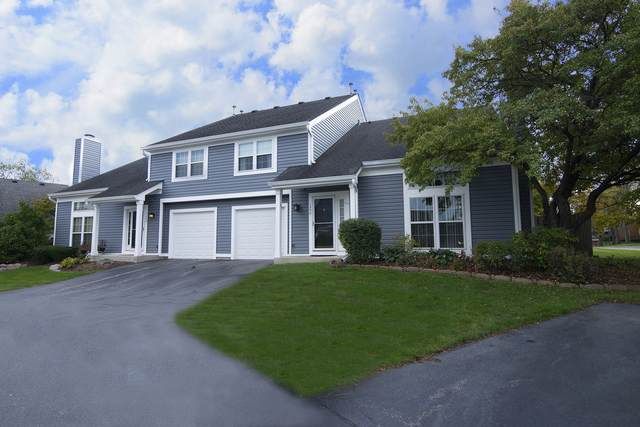 1250 N Knollwood Drive #1250, Palatine, IL 60067 (MLS #11253541) :: Littlefield Group
