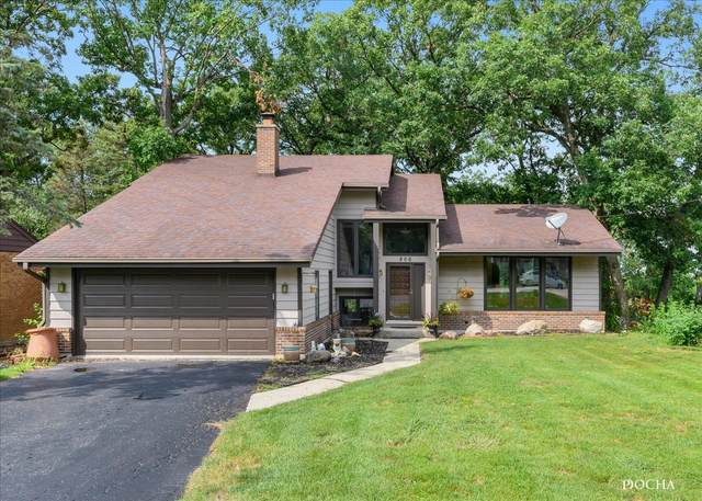 806 Vinewood Avenue, Willow Springs, IL 60480 (MLS #11253552) :: The Wexler Group at Keller Williams Preferred Realty