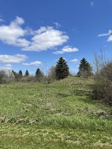 39945 Jonathan Knolls Lane, Wadsworth, IL 60083 (MLS #11253577) :: Ryan Dallas Real Estate
