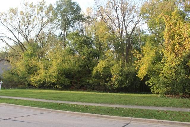 28 Ellis Avenue, Libertyville, IL 60048 (MLS #11253609) :: Ryan Dallas Real Estate