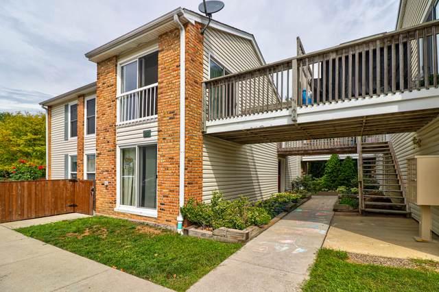 1982 Kenilworth Circle D, Hoffman Estates, IL 60169 (MLS #11253707) :: Ani Real Estate