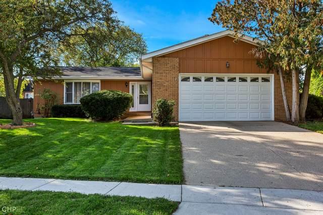824 Braemar Drive, Mundelein, IL 60060 (MLS #11253719) :: Helen Oliveri Real Estate