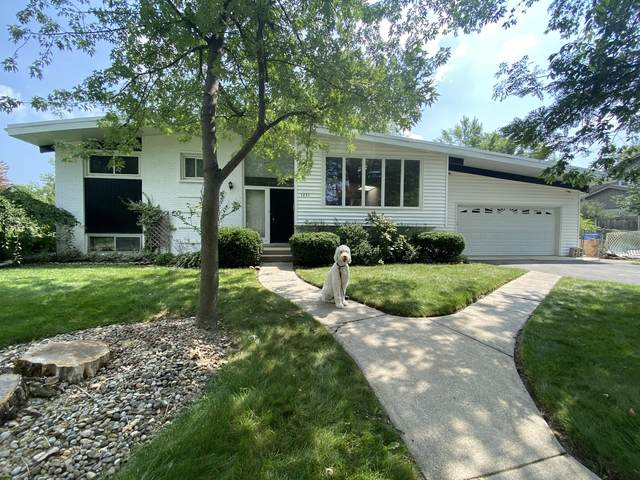 1231 Mcdaniels Avenue, Highland Park, IL 60035 (MLS #11253728) :: The Wexler Group at Keller Williams Preferred Realty
