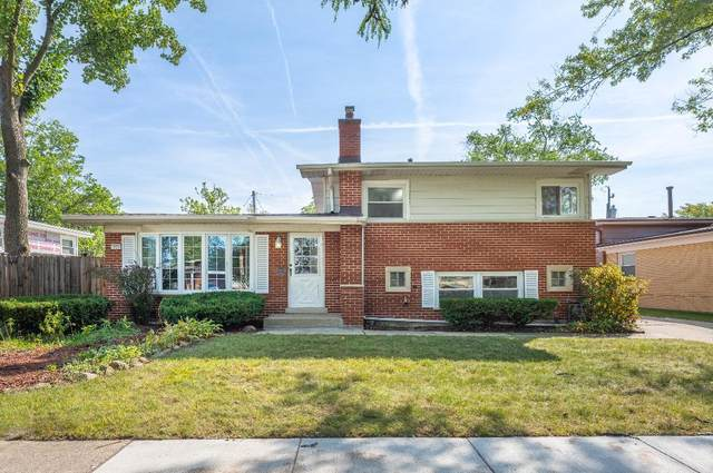 125 Serena Drive, Chicago Heights, IL 60411 (MLS #11253868) :: Ryan Dallas Real Estate