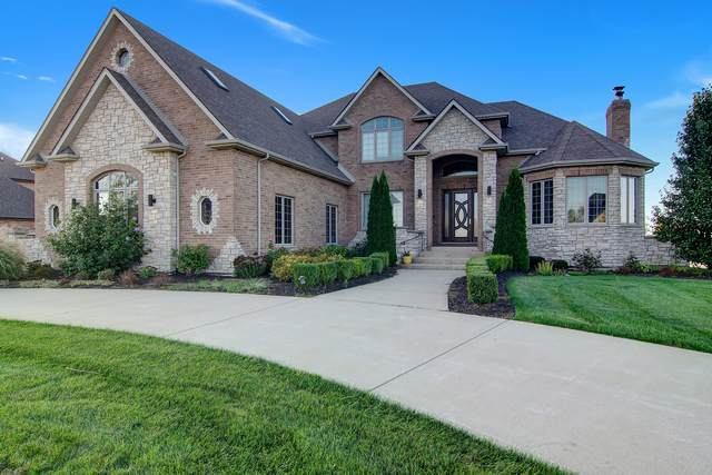 11336 Mckenna Drive, Frankfort, IL 60423 (MLS #11253901) :: Helen Oliveri Real Estate