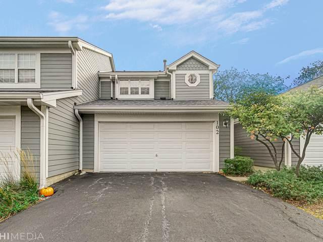 102 Sarahs Grove Lane, Schaumburg, IL 60193 (MLS #11253927) :: Ani Real Estate