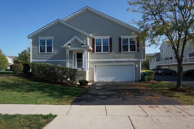 3090 Woodside Drive, Joliet, IL 60431 (MLS #11253953) :: Ani Real Estate